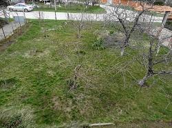 Селски имот с.Горно Брястово