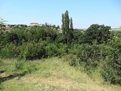 Селски имот с.Динево