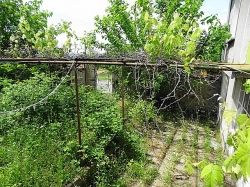 Селски имот с.Брягово
