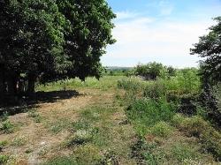 Селски имот с.Ябълково