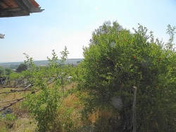 Селски имот с.Долно Брястово